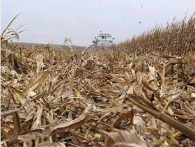 Crop Residue Becomes Money-Maker in US