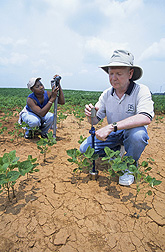 ARS hydrologist Tom Jackson and student Parmecia Jones use different methods to test soil moisture.