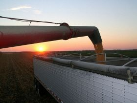 Feed Outlook: Arable Output to Break Records By 2018