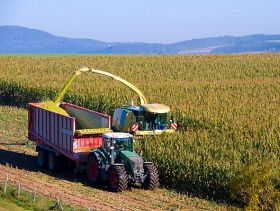 Water a Limiting Factor to Corn Silage Quality