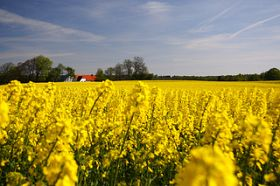 New Model Measures Danish Agricultural Efficiency