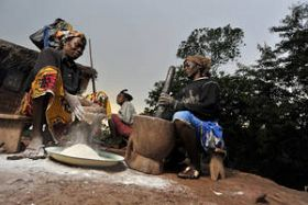 Farmers Need Urgent Help in the Central African Republic