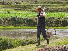 More Ecological Requirements for Chinese Agriculture
