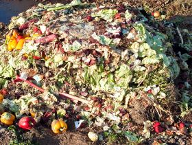 Most EU Food Waste Avoidable