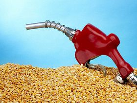 Exploding Ethanol RINs Prices: What's the Story?