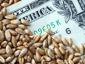 Wyckoff's Closing Grains: Corn Closed Lower