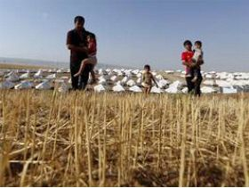 FAO Says Iraq Faces Serious Food Security Due to Conflict
