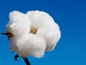 US Macroeconomic Indicators for Cotton Supply Chain