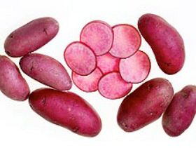 New Potato Variety: A Colourful Dish for the Holidays