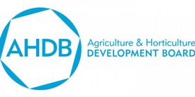 AHDB Appoints New CEO
